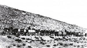 Namaqualand_mule_train