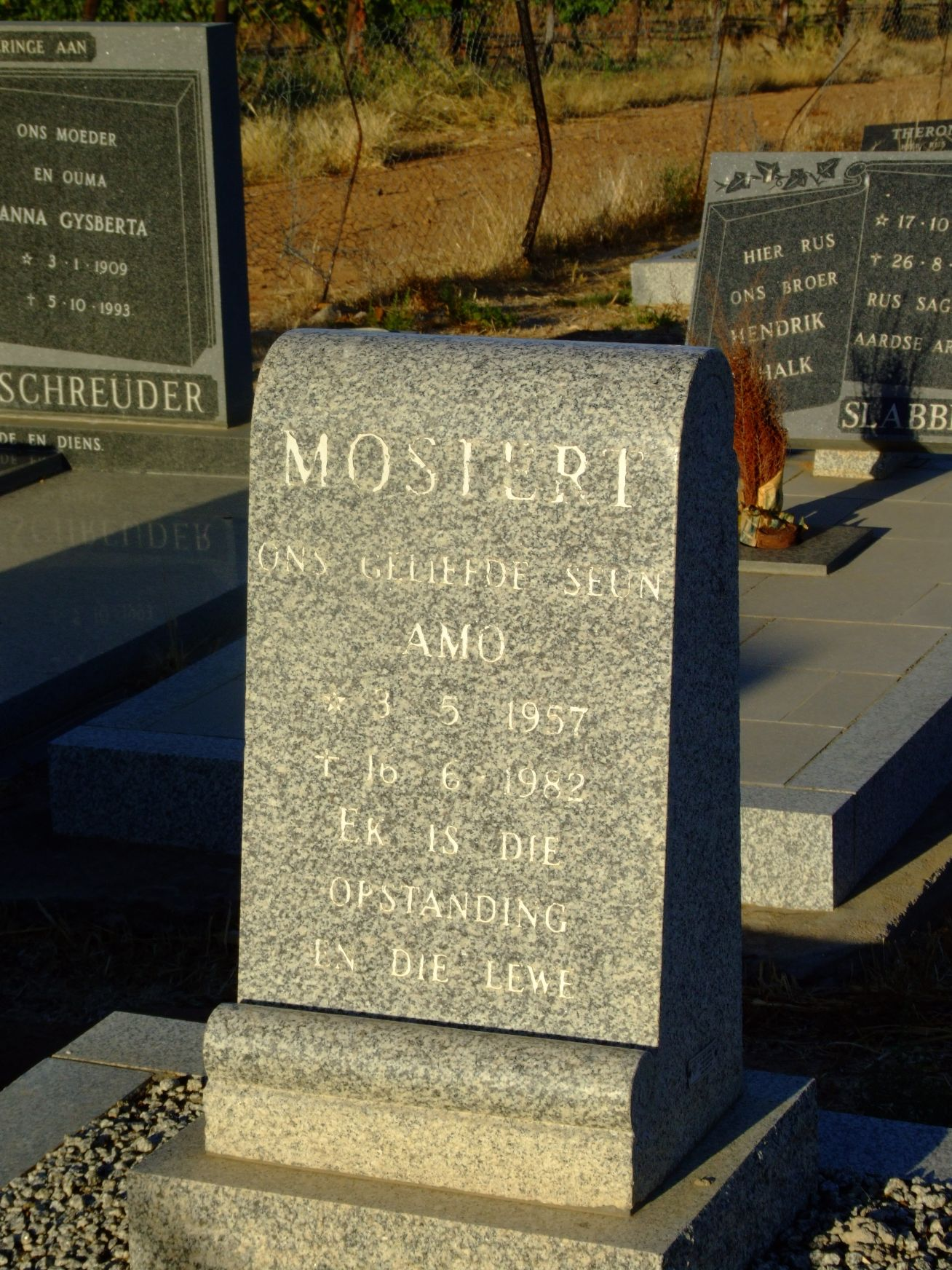 Mostert, Amos