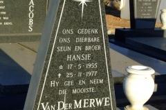Van Der Merwe, Hansie
