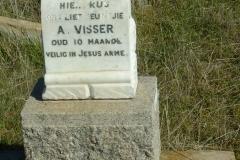 Visser, A aged 10 months
